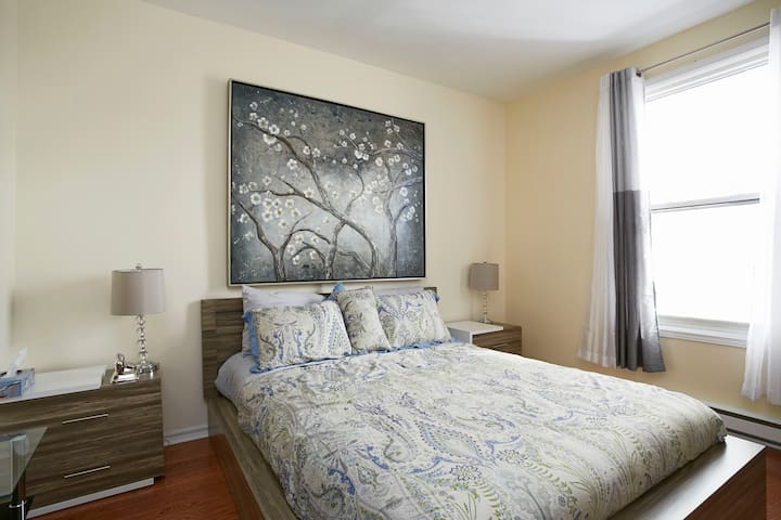 Bright newly renovated in Plateau - Montreal - Byt
