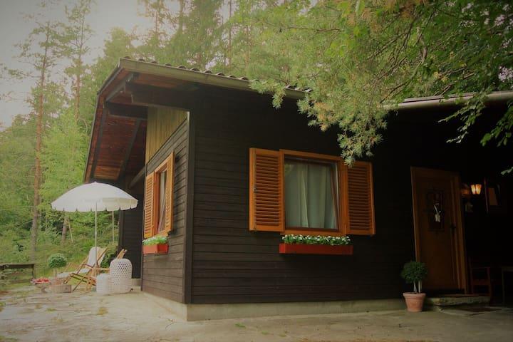 Cozy Chalet in Molln,Austria near Forest