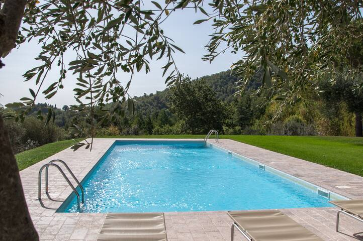 HILL TOP, DELIGHTFULL APARTMENT - San Casciano dei Bagni - House