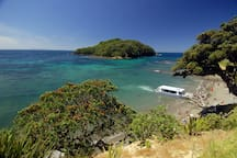 Goat Island Marine Reserve - just 5 minutes drive away. Best place to snorkel and dive off a beach in New Zealand.