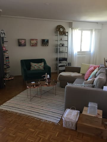 Nice flat in Geneva (Carouge) - Carouge - Appartement