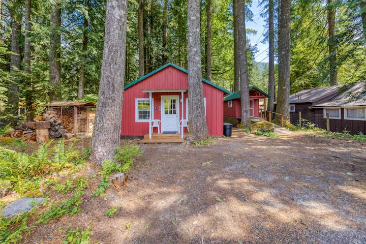 New listing! Dog-friendly cabin in the woods in a peaceful Mt Hood location!