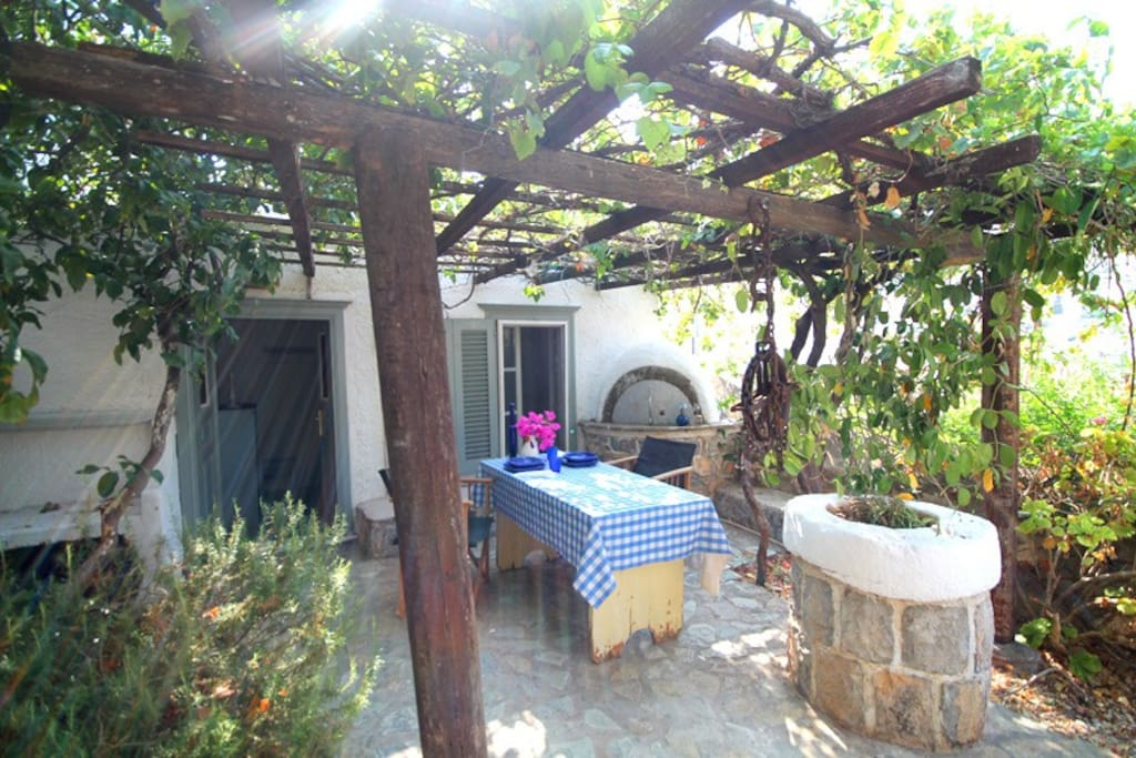 Relax under the grape vines