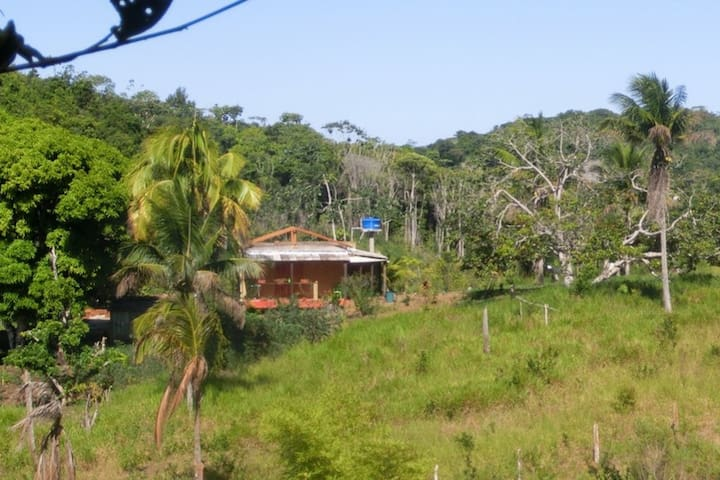 Secluded farmhouse at 4 km from the riverside village Taboquinha. For a tranquil stay in lush tropical nature.