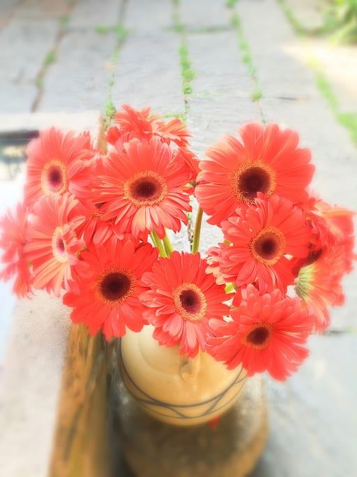 红艳艳的颜色,让人心情大好……