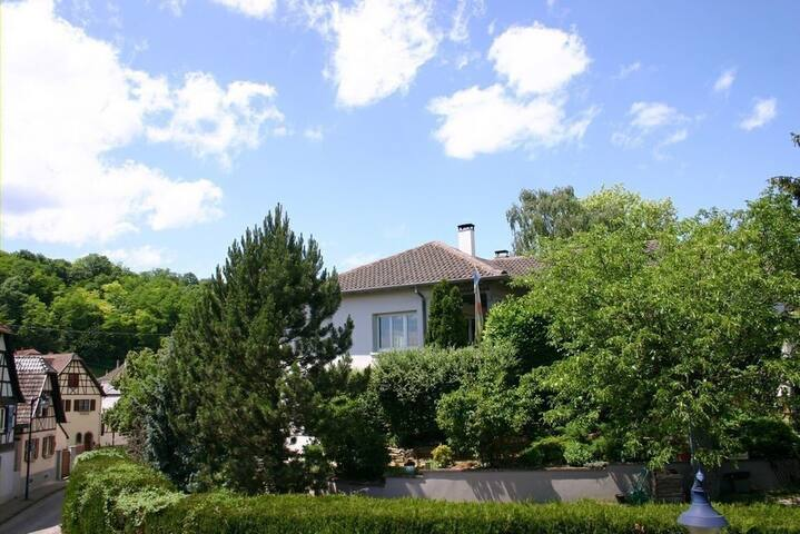 Alsatian village/Vineyard/Swimming pool/Sauna