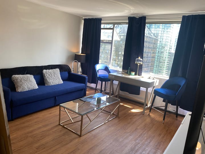 Lux Aparment Coal Harbour