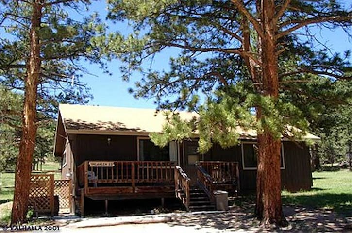 Spacious 2 Bedroom Cabin w/Hot Tub-5th nt 1/2 off!