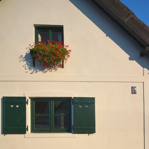Apartmani Kopačevo