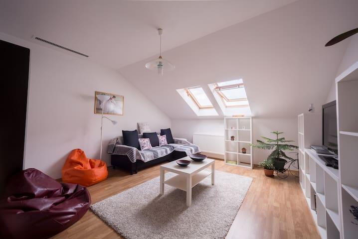 Friendly attic
