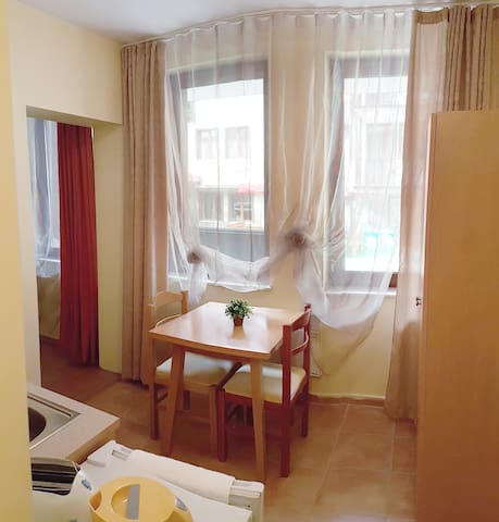 Ski Studio apartment 105A - Smolyan - Leilighet