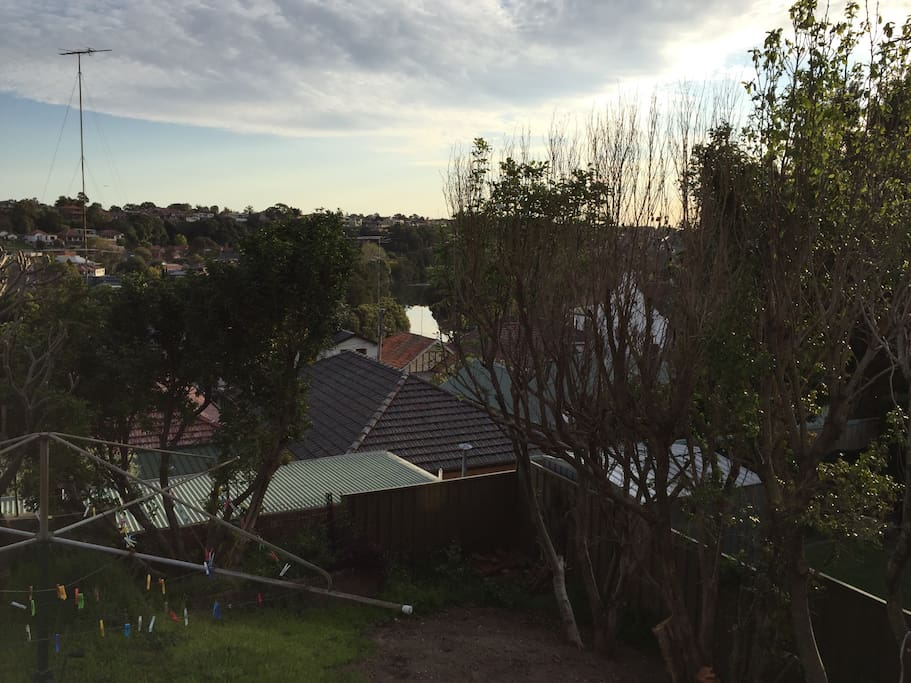 Peaceful back garden outlook with glimpses of the Cooks River