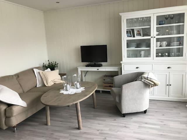 Lys trivelig leilighet