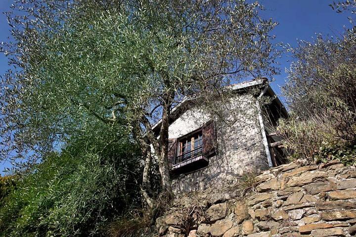 Vakantiehuis voor 2 personen, Italie, Ligurie. Fantastisch gelegen tussen de beroemde olijfbomen van Ligurie ligt ons vakantiehuisje op 15 min van het plaatsje Pigna. Geschikt voor 2 personen die van de zon en de zee houden, maar ook van rust en de natuur