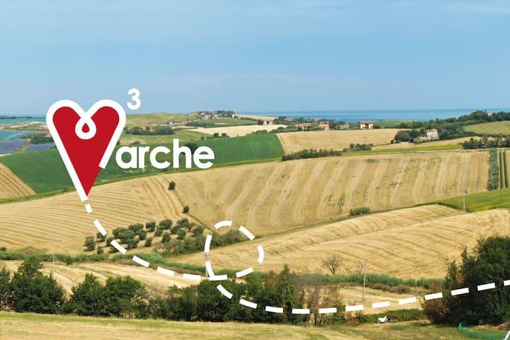 Love Marche 3