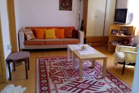 Dolno Dupen for best vacation ever - Dolno Dupeni - Lägenhet