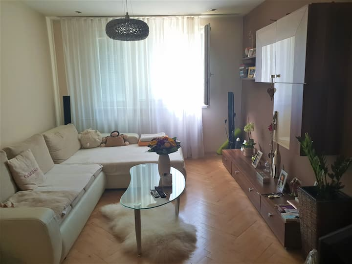 IIHF 2019 cozy appartment, 3min from centre