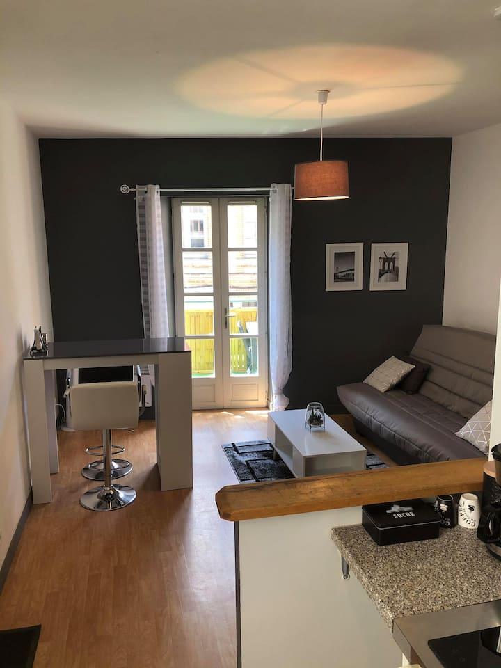 Studio avec terrasse Montauban