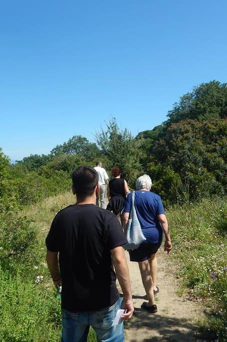 Escursione sul Tresino