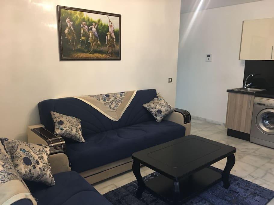 Le Salon de L'appartement avec un lit clic-clac
