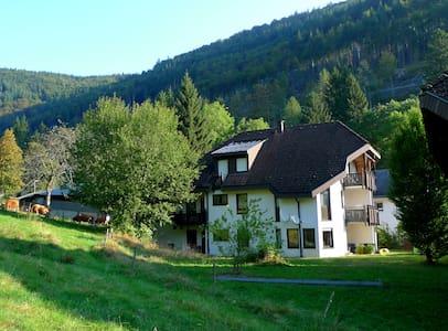 Naturnahe Ferien am Feldberg / Aftersteg - Todtnau - 公寓
