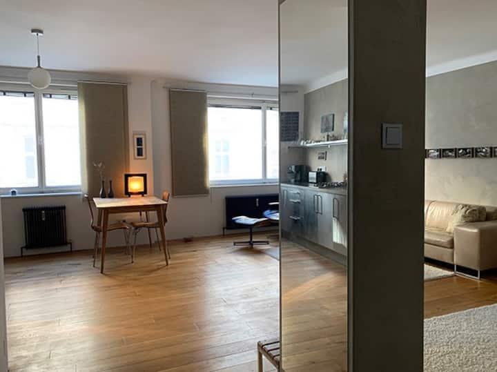 Studio Apartment in the heart of Vienna. NEW!