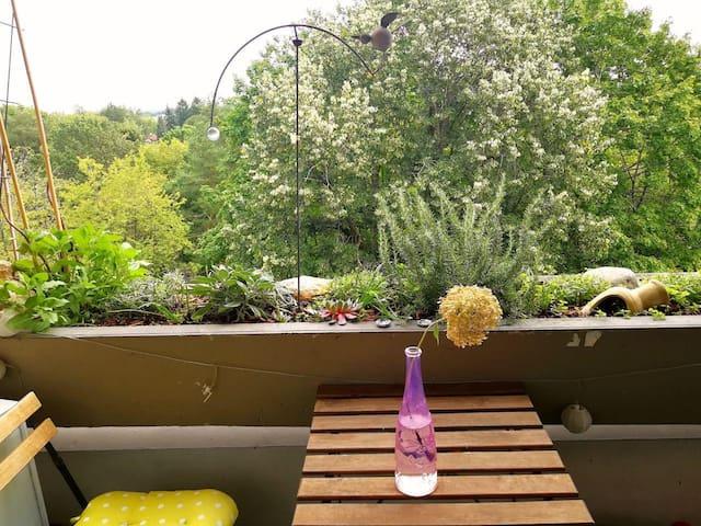Helles Zimmer für 1-2 Pers. mit eigenem Balkon