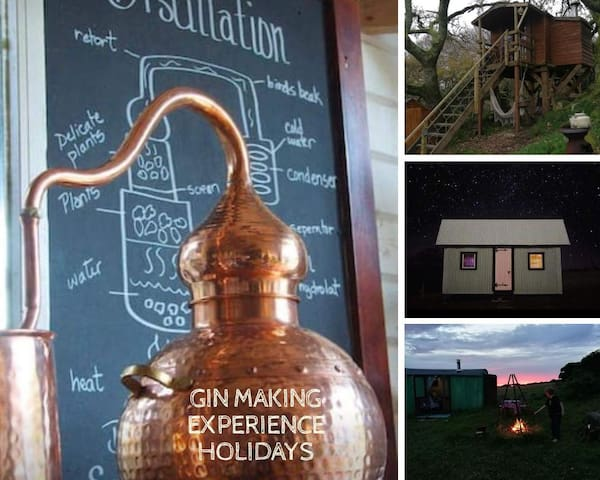 Gin Experience Holiday at Distillery in Cornwall