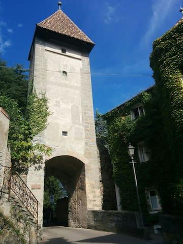 la casa accanto alla Torre