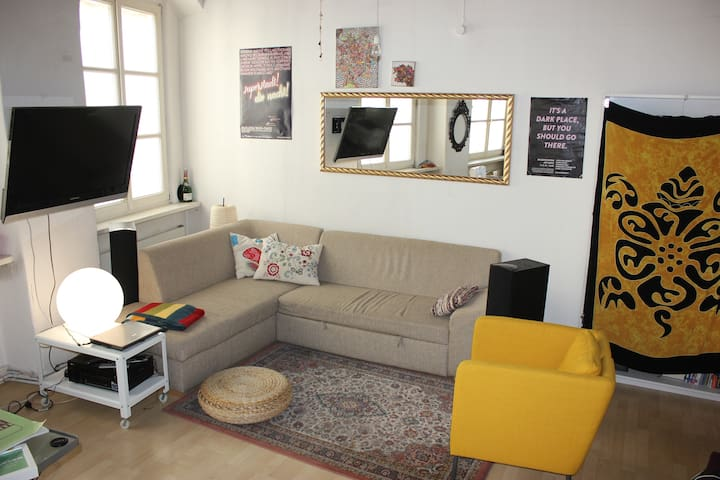 Beautiful bohemian Flat, middle of Old Town, 56m² - Linz - Leilighet