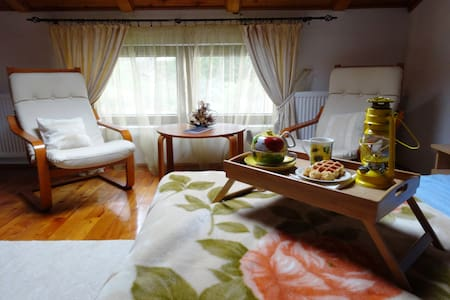 Nice&cozy chalet in the Carpathians - Bușteni - 別荘