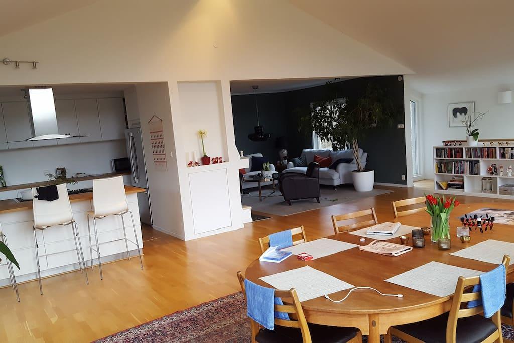 Livingroom 1 and Kitchen