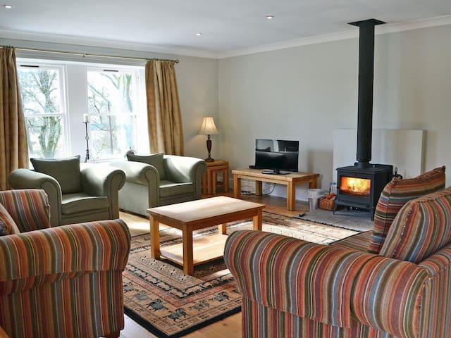 Spacious living room with wood burning stove
