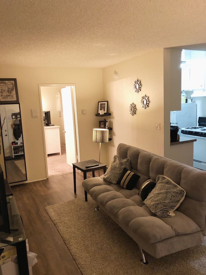 Living room,  equipped with futon couch/bed