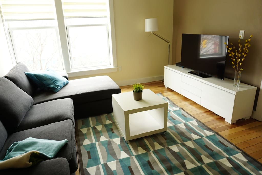 Living room with 50 inch smart HDTV and Blu-ray/DVD player.