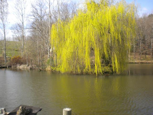 maison vue sur un lac privé - Guérin