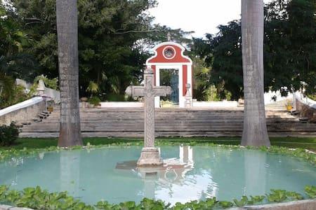 Hacienda San Antonio Dzina - Motul - Andre