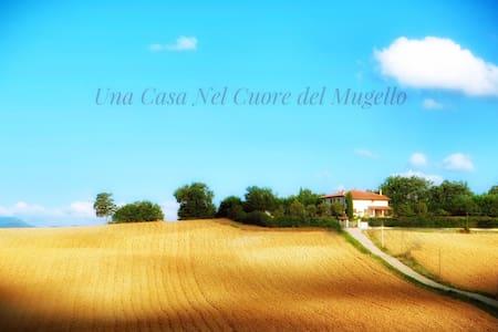 Villa Marcello - San Piero a Sieve