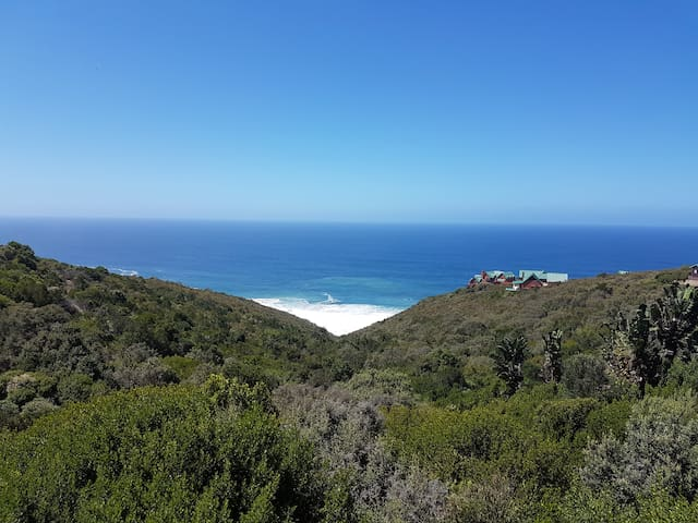 Sea Major:  the Garden Route's most beautiful view - Herolds Bay - Dom