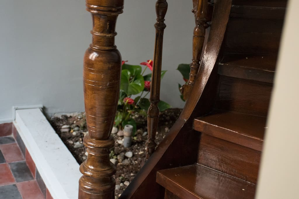 100 year old renovated stair leads to other apartments