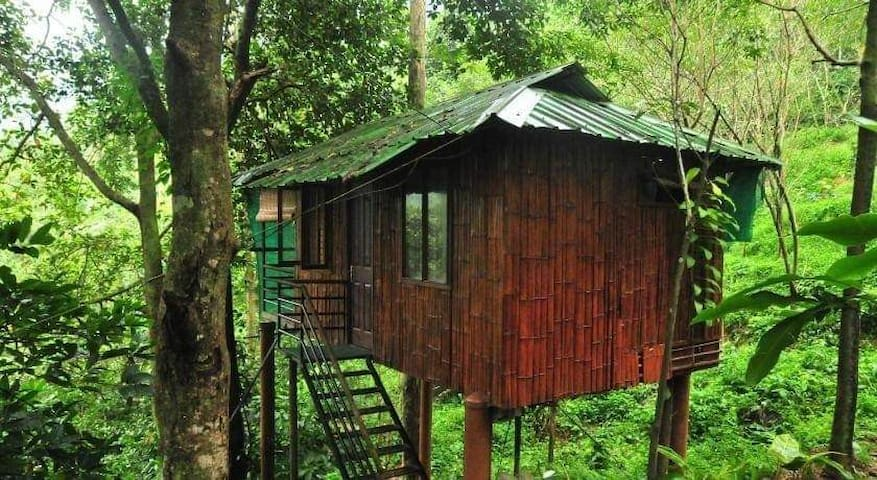 TENT AND TREE HOUSE THUSHARAGIRI NEAT & CLEAN
