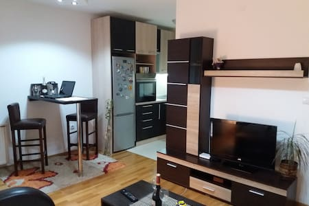 Beautiful apartment Niš, Serbia - Niš