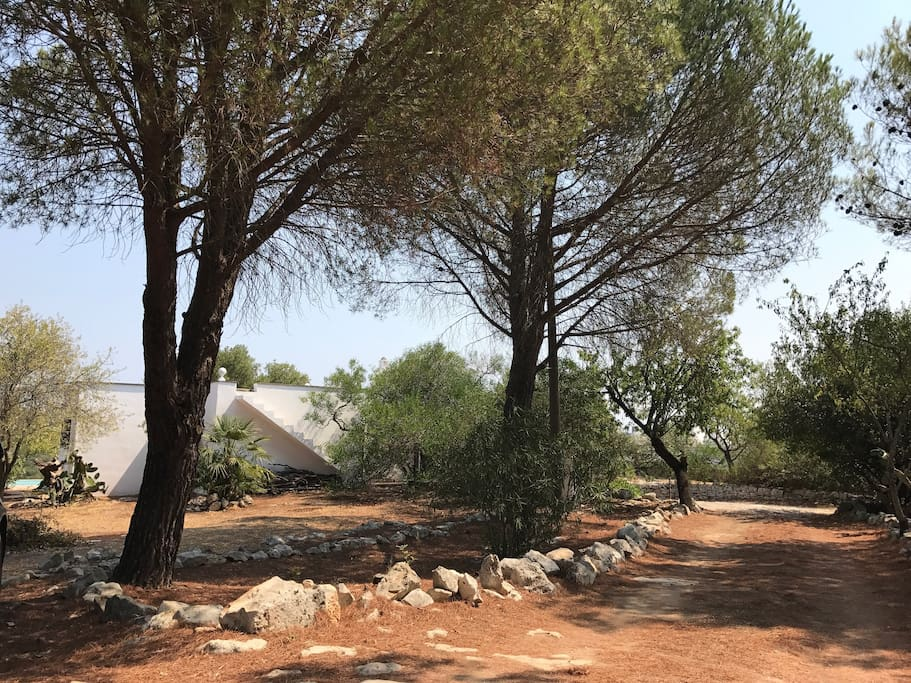 Walkway to the trullo