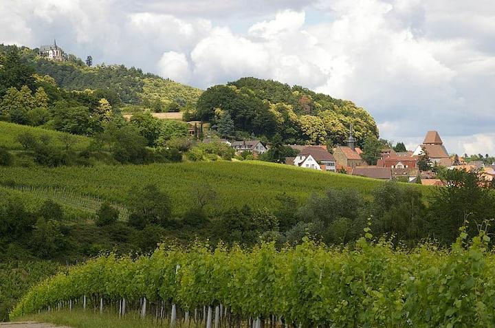 Maison Pfalz in Burrweiler