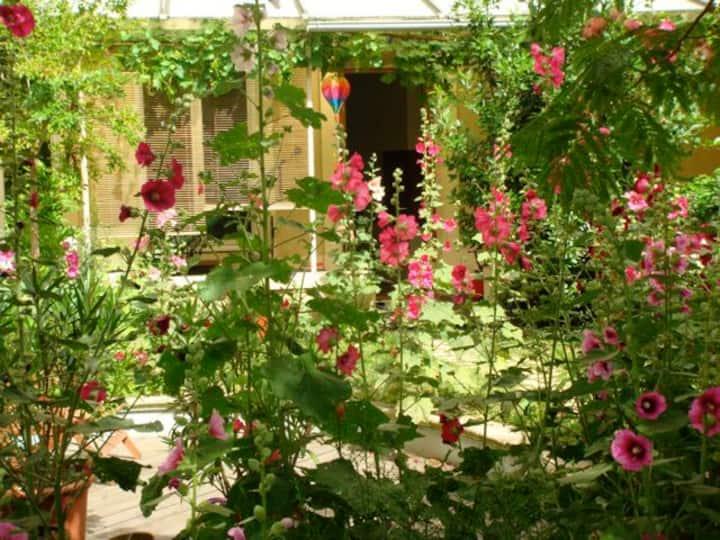 Chambre typique  Croix Rousse avec accès jardin