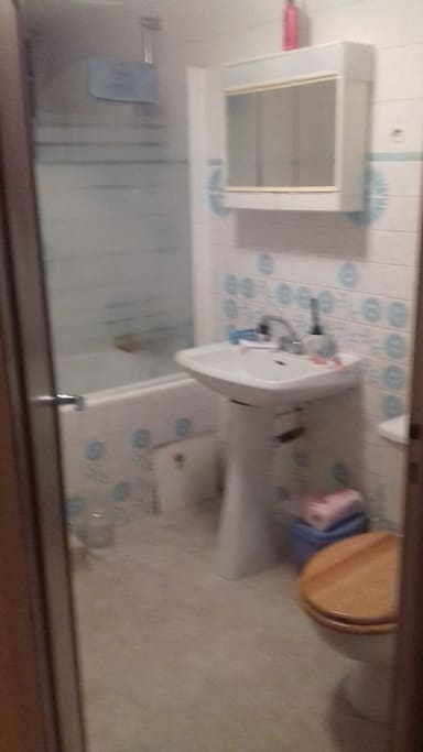 Bathroom with shower, washbasin and w.c.