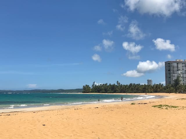 Newly Remodeled, Beach Front, 3BDRM Apt!