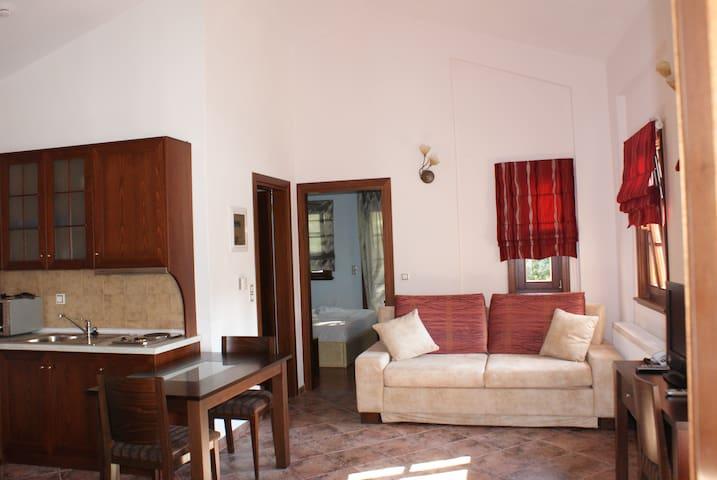 Ελ . Μαγκαφινης Τhe red apartment
