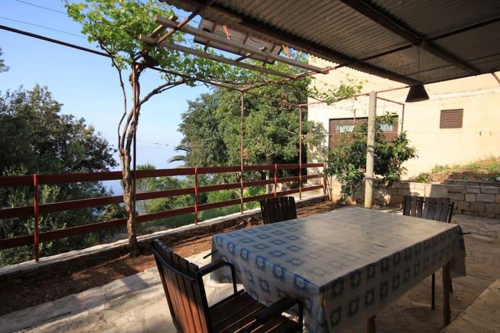 Two bedroom apartment near beach Cove Rapak bay - Rapak (Hvar) (A-8767-a)