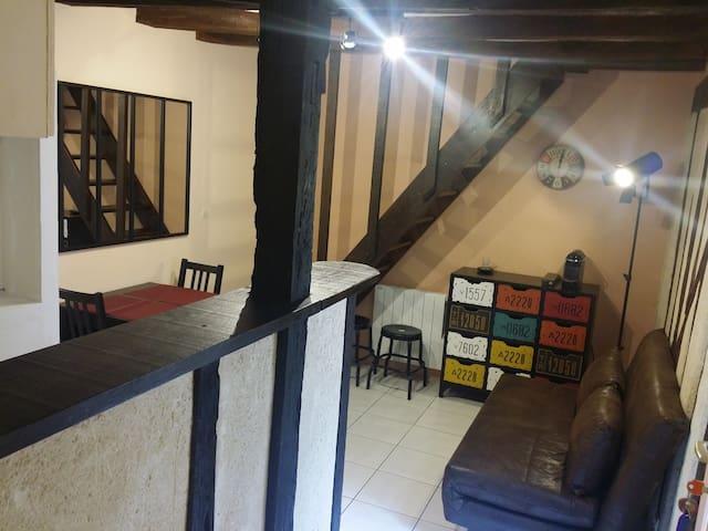 Appartement Vieux Mans
